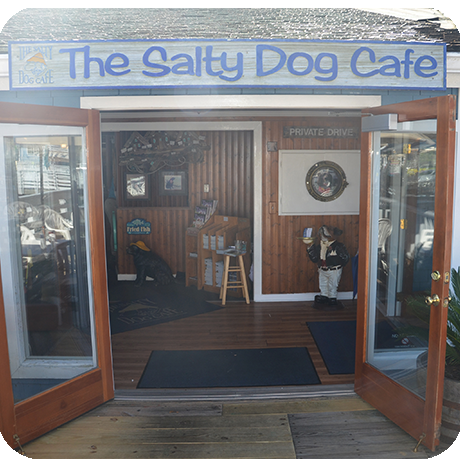 Salty Dog Cafe Front Door wide open, viewed from outside.